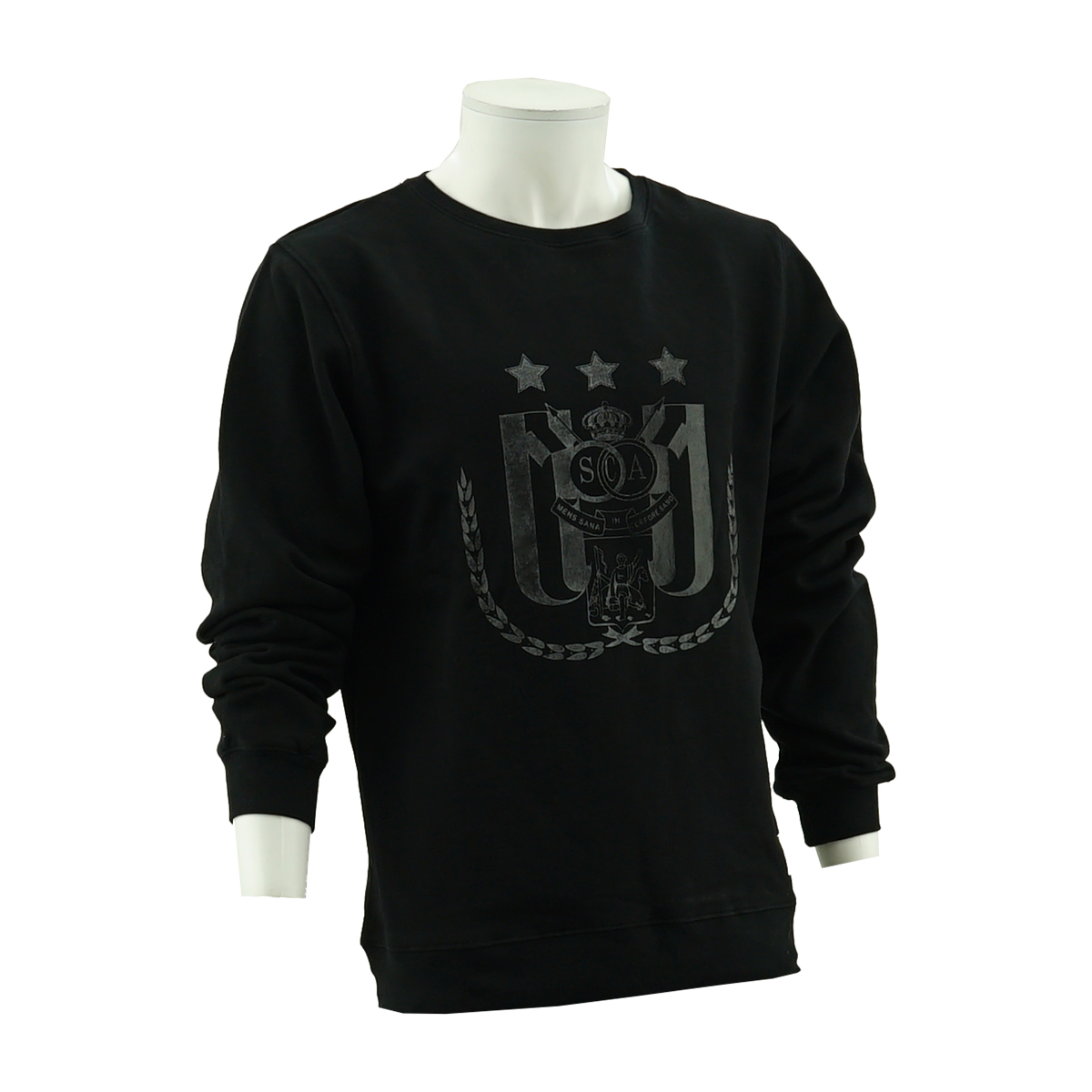 RSCA Sweater Men Crewneck Gradient Logo